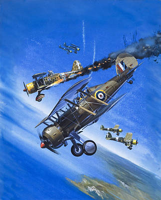 Raf Painting - Gloster Gladiator by Wilf Hardy