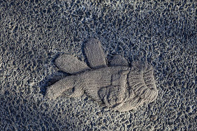 Glove Print by Robert Ullmann