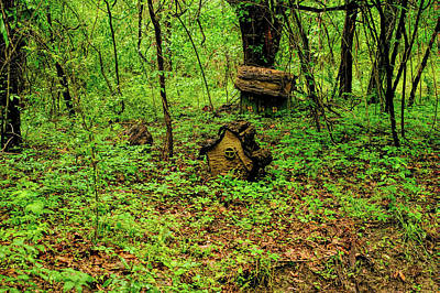 Old Photograph - Gnome Cabin In The Woods V4 by John Straton