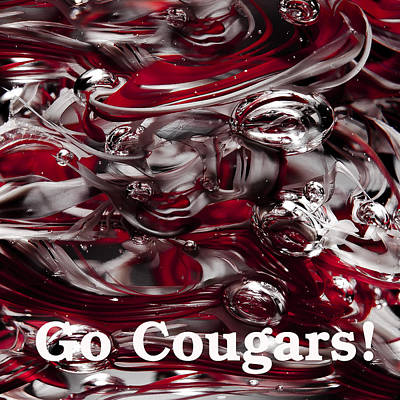 Go Cougars Print by David Patterson