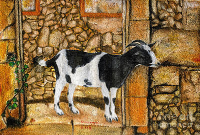 Painting - Goat Standing On A Rock by Fine art Photographs
