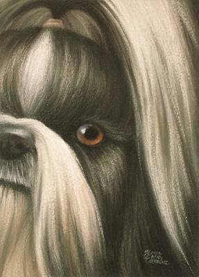 Goggie Shih Tzu Print by Karen Coombes