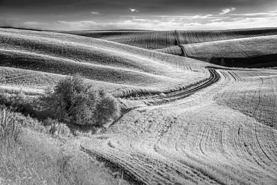 Farm Photograph - Going Down That Road by Jon Glaser