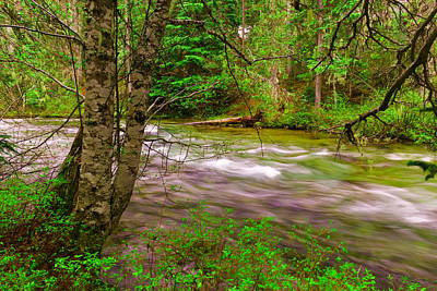 Snow Melt Photograph - Going To The River by Jeff Swan