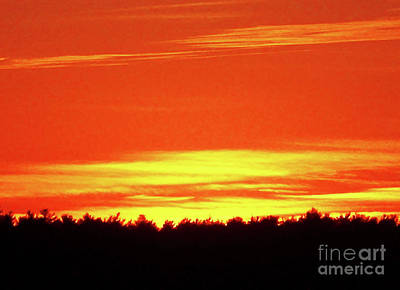 All Faa Photograph - Gold And Red Sunset Silhouette by Mary Ann Weger
