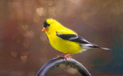 Gold Finch Love Original by Mary Timman