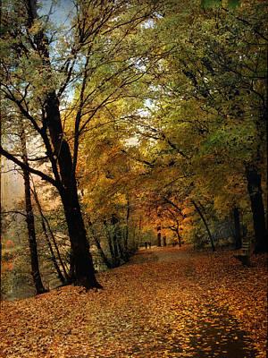 Autumn Landscape Photograph - Golden Carpet by Jessica Jenney