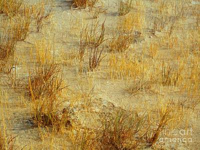 Digital Art - Golden Earthscape by Ann Johndro-Collins