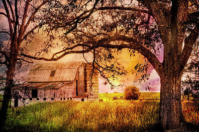 Golden Farmlands Print by Debra and Dave Vanderlaan