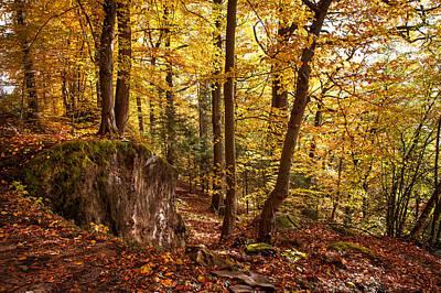 Golden Glimpses Of Autumn Print by Jenny Rainbow