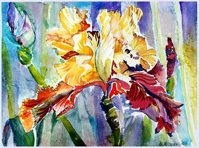 Irises Drawing - Golden Iris by Mindy Newman