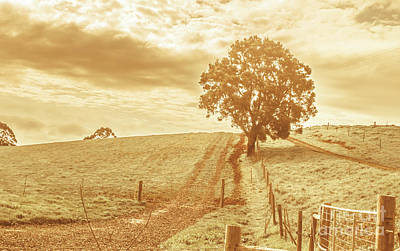 Old Country Roads Photograph - Golden Morning In Outback Australia by Jorgo Photography - Wall Art Gallery