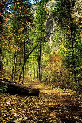 West Fork Digital Art - Golden Path Of Shadows by Marshall Everett
