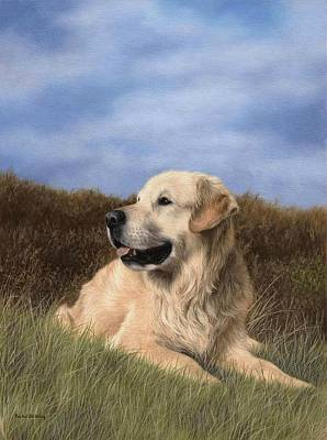 Golden Retriever Painting Original by Rachel Stribbling
