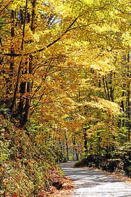 Golden Road Original by Alan Lenk