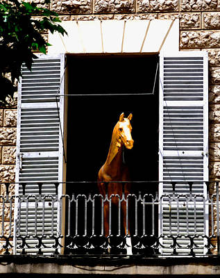 Horses Photograph - Golden Stallian by Charles Stuart