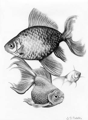 White Drawing - Goldfish by Sarah Batalka