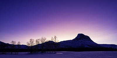 Winter Trees Photograph - Good Morning by Tor-Ivar Naess