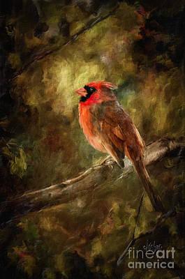 Cardinal Digital Art - Goodbye Mr. Pip by Lois Bryan