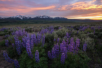 Gore Range Photograph - Gore Range Sunset by Aaron Spong