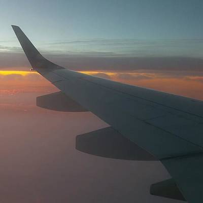 Morning Photograph - Sunrise Flight  by Charlie Cliques