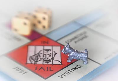 Board Game Photograph - Got Bail by David and Carol Kelly