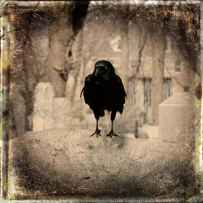 Gothic Sepia Crow Print by Gothicrow Images