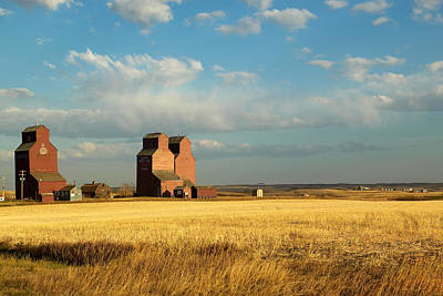 Grain Elevators Stand In A Prairie Print by Pete Ryan