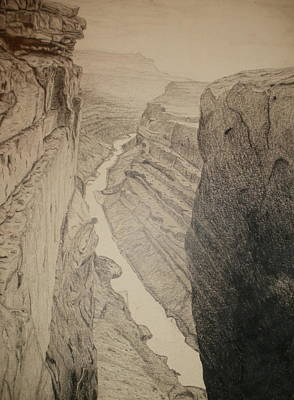 Grand Canyon Drawing - Grand Canyon by Phil Pedder-Smith