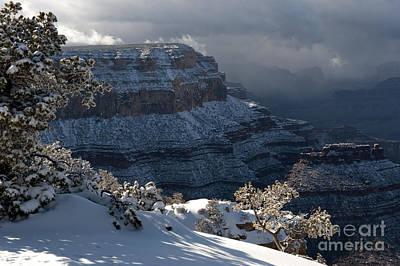 Grand Canyon Storm Print by Sandra Bronstein