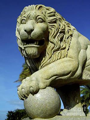 Photograph - Granite Lion by D Hackett