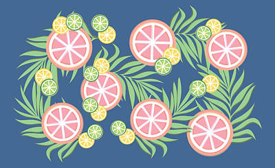 Lime Drawing - Grapefruit  by Lauren Amelia Hughes