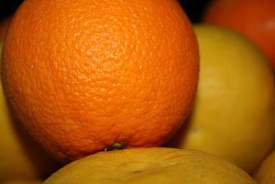 Grapefruit Orange Print by Joshua Sunday
