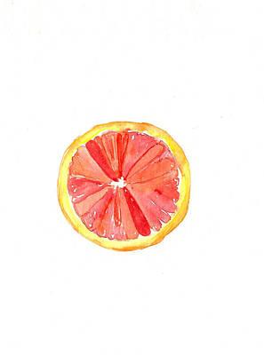 Grapefruit Drawing - Grapefruit by Rachael Ryan