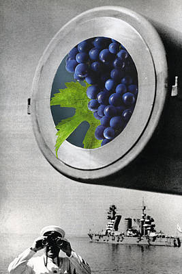 Wine Mixed Media - Grapes In A Cannon by Francine Gourguechon