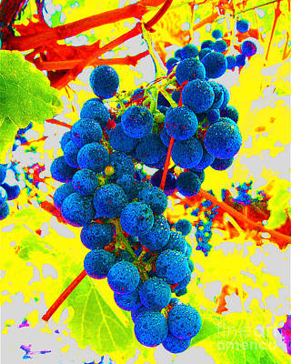 Grapes Original by Jerome Stumphauzer