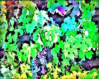 Grape Vine Digital Art - Grapes On The Vine by Cindy Edwards