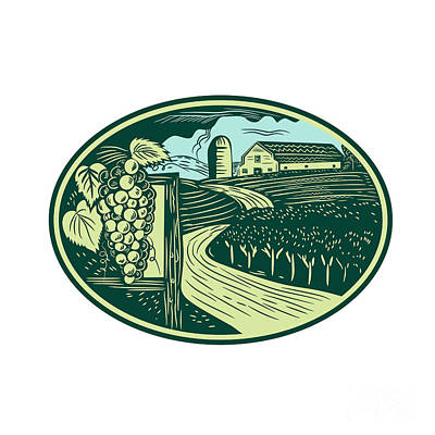 Grapes Vineyard Winery Oval Woodcut Print by Aloysius Patrimonio