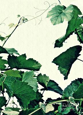 Grapevines Digital Art - Grapevine by Sarah Loft