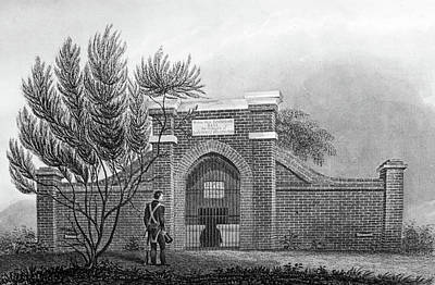 George Washington Drawing - Grave Of George Washington by Douglas Barnett