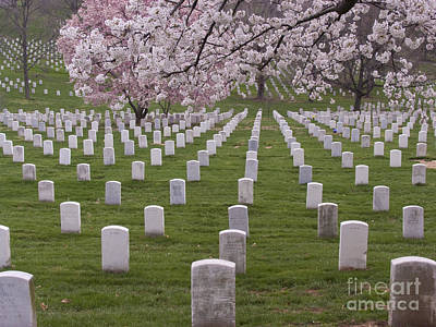 Graves Of Heros In Arlington National Cemetery Print by Tim Grams