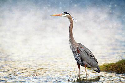 Heron Digital Art - Great Blue Heron by Bill Tiepelman