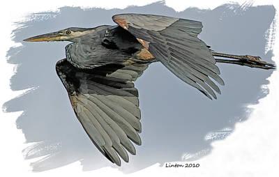 Heron Digital Art - Great Blue Heron Flight by Larry Linton