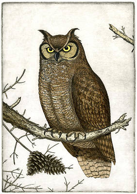 Etching Mixed Media - Great Horned Owl by Charles Harden