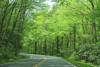 Smokey Mountain Drive Photograph - Great Smokey Mountains by Karen Ruhl