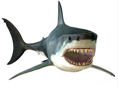 Great White Shark Mouth Print by Corey Ford