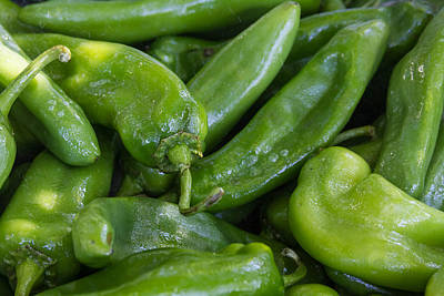 Green Chile Peppers Print by James BO  Insogna