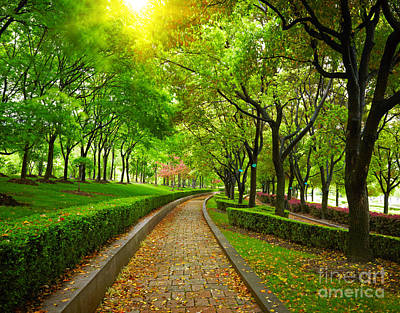Green City Park. Shanghai, China Print by Unknow