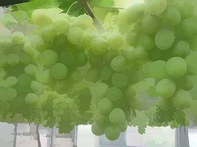 Green Grapes Print by Lanjee Chee