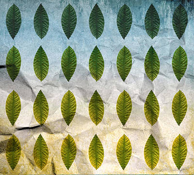 Leaves Photograph - Green Leaf  by Sumit Mehndiratta
